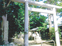 三浦の散歩道  〈第69回〉