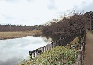 コースのひとつ小松ヶ池