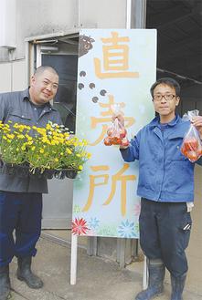 採りたて野菜が100円から並ぶ