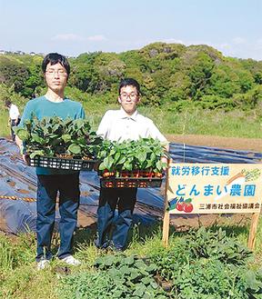 専用の畑で夏野菜を栽培する利用者