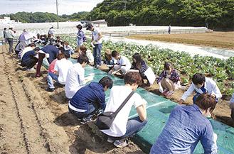 体験を通して農業と観光の新たな旅行プランを模索