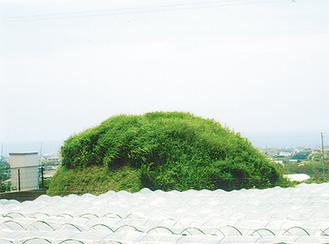 畑の中に見られる義士塚の一つ