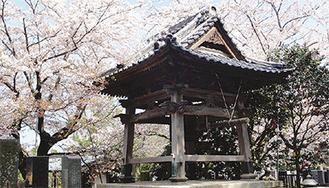 春には桜が咲く古刹・本瑞寺