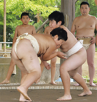 横須賀市代表との合同練習で切磋琢磨する
