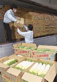 トラックに積まれる三浦半島産野菜