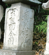 三浦の散歩道〈第134回〉