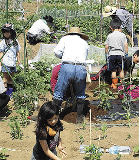 食の大切さを体感できる親子農業教室