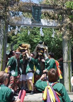 14日の宮出しで海南神社を出発し、下町へ向かう獅子