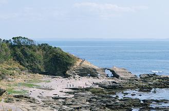 風光明媚な城ヶ島をめぐる