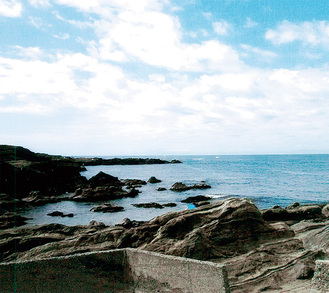 城ヶ島の岩礁地