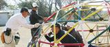 塗装職人が「色」で貢献