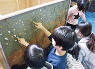 三浦の芸術家を活写