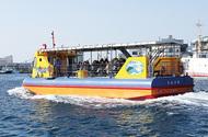 三浦の海で遊ぼう