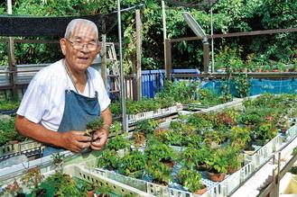 小品盆栽愛好家小網代在住 宇野登さん(85)