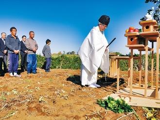 収穫日に松輪の畑で行われた清祓式
