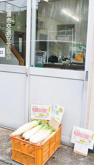 交通安全協会の入口に置かれているダイコン