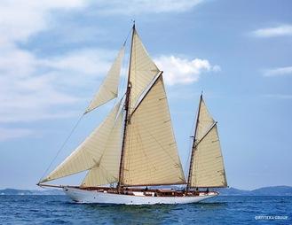 帆走するCYNARA(写真提供/リビエラグループ)