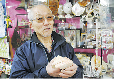 江の島・貝の博物館 創業100年