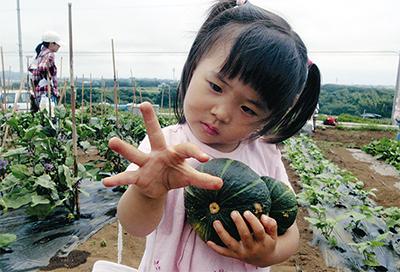 家族や仲間と野菜作り