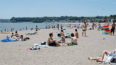 昨年より135・4%増 今年の海水浴客数
