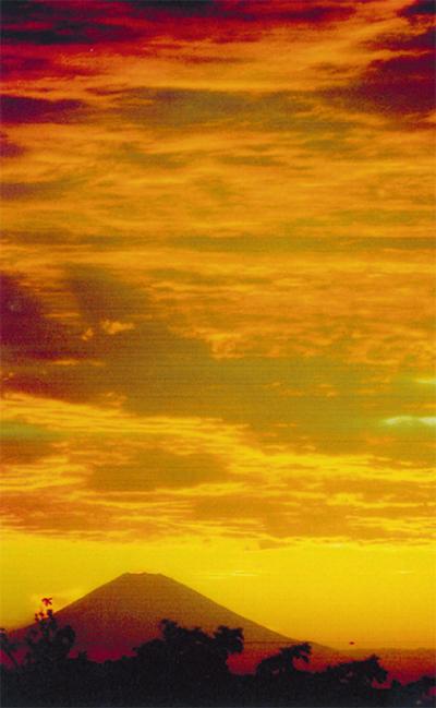 三浦の自然を写す