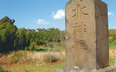 三浦の散歩道  〈第31回〉