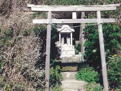 三浦の散歩道  〈第52回〉