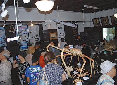 海洋生物標本などを公開