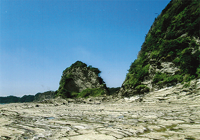 三浦の散歩道  〈第67回〉