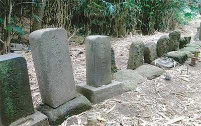 三浦の散歩道  〈第68回〉