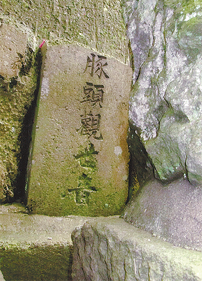 三浦の散歩道  〈第80回〉
