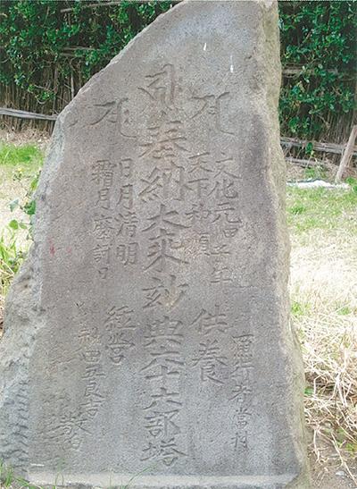 三浦の散歩道  〈第99回〉