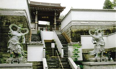 三浦の散歩道  〈第115回〉