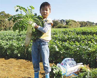 身近な農業、体験で学ぶ