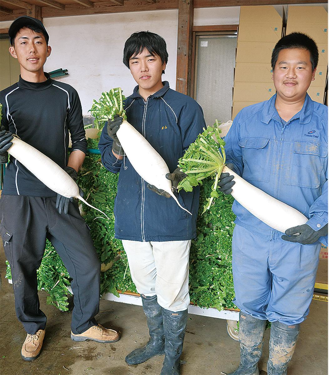 収穫した在来種の三浦大根を手にする(写真右から)池田さん、米山さん、三富農園の三富さん