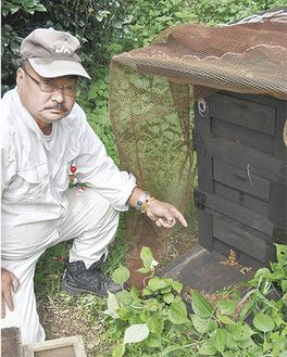 ハチがいなくなった巣箱を指さす石井さん