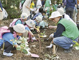 森の会メンバーの手ほどきで苗木を植える子どもたち