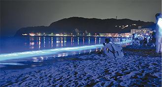 特殊な青い照明が夜の砂浜を幻想的に演出した(=11日、逗子海岸)