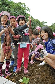 収穫したサツマイモを嬉しそうに持ち上げる園児ら(先月25日、逗葉高校)
