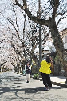 桜並木を背景に記念撮影する親子(=5日、久木)