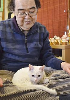 広沢さんの上でくつろぐ「マリン」。同館で元気な姿を見ることができる(=8日、猫の家)