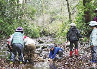 森戸川で遊ぶ子ども達