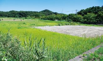 沼間の建設予定地