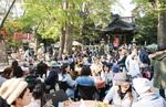 春と秋に開かれる「逗子コミュニティパーク」には、多くの市民が集う