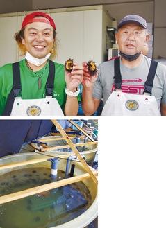 ウニを手にする座間さん(左)と大竹組合長、(写真下)漁港内の水槽