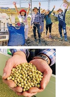 (上から)脱穀を終えた亀田さん(左から2人目)たちと収穫した「葉山たのくろ豆」