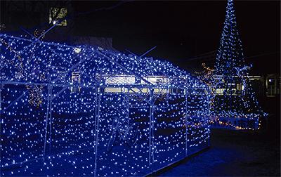 駅前彩る2万球の電飾