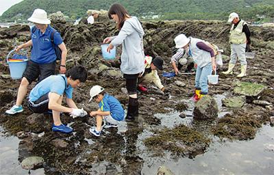 相模湾の自然を学ぼう