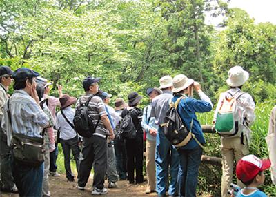 アジサイと山野草と野鳥を観察