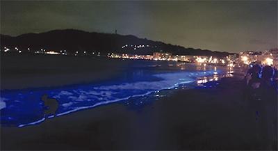 輝く波間、幻想的に